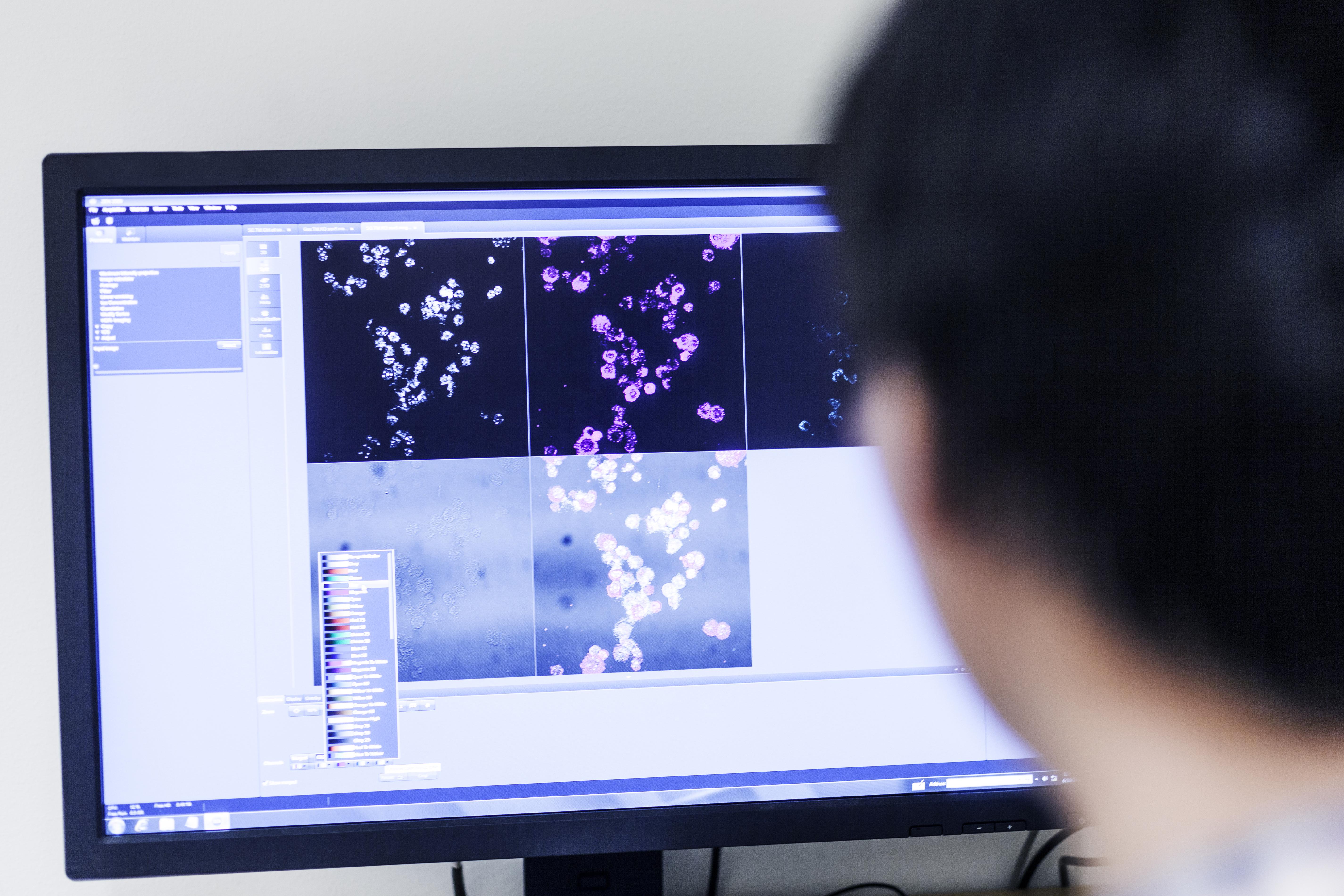 scientist-using-desktop-pc-in-lab-6DZ3RLF